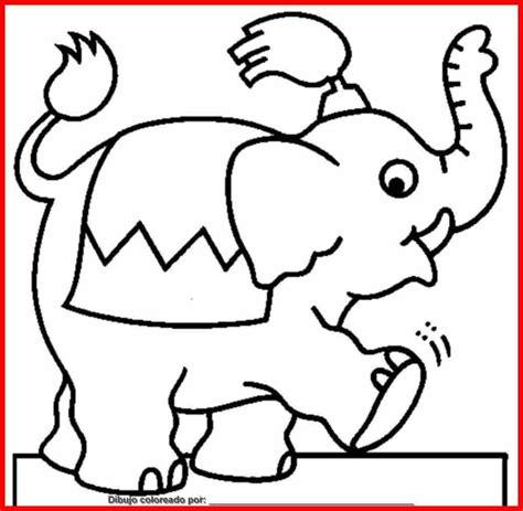 imagenes infantiles elefantes dibujo de elefantes para colorear e imprimir