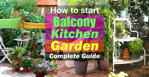 start  balcony kitchen garden complete guide
