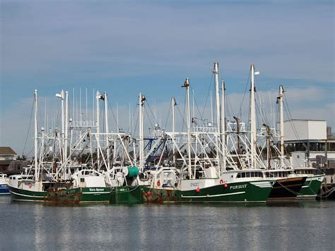 fishing boat nj cape may new jersey commercial fishing