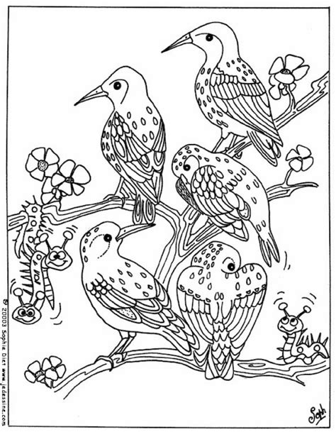 coloring pages of birds in trees dessin 195 colorier oiseau bless 195 169