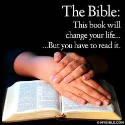 in this book you will find books i m so grateful for god s promises god is