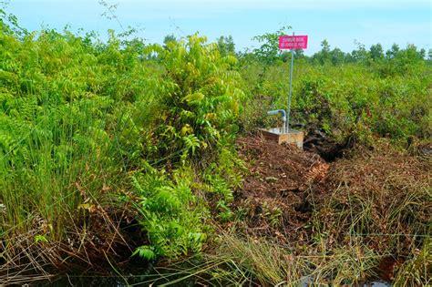 Bor Gambut antisipasi kebakaran lahan gambut ratusan sumur bor