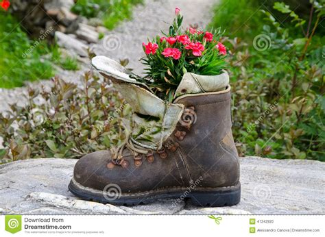 Boot Used As A Planter Stock Photo Image Of Passiria Boot Planter