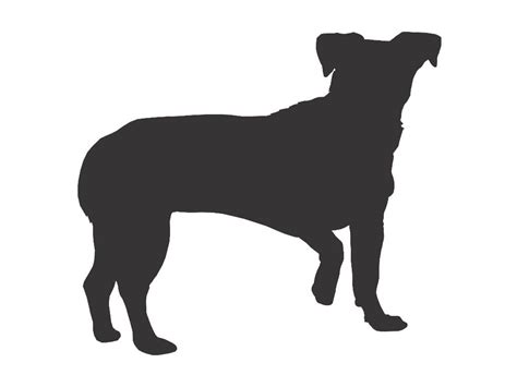 shih tzu silhouette shih tzu coloring pages coloring pages