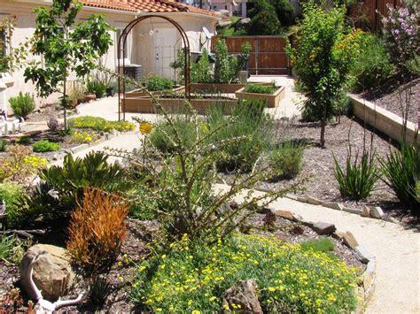 Award Winning Case Study Xeriscape San Diego San Diego Landscape Design