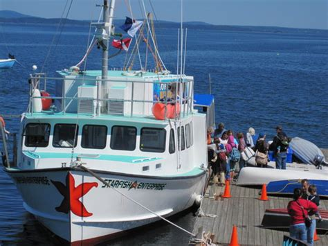 fan boat tours near me the top 10 things to do near oli s trolley acadia
