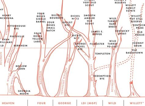 Color Suggestions For Website The Bourbon Family Tree Infographic Thebourbonblog Com