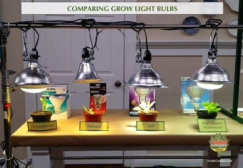 grow lights  beginners start plants indoors
