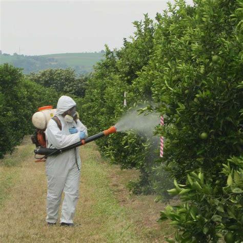 tree spray 綷 寘 綷 綷 綷 綷 綷