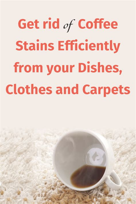 get rid of coffee stains efficiently from your dishes clothes and carpets cleaning tips