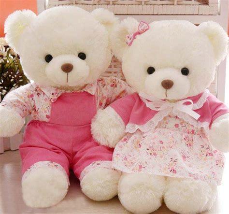 wallpaper of couple teddy bear cute teddy bear couple wallpaper