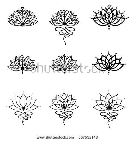 lotus flower stock images royalty free images amp vectors