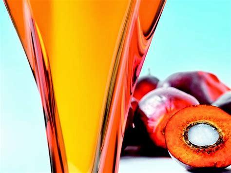 Minyak Kelapa Sawit Malaysia manfaat minyak kelapa sawit