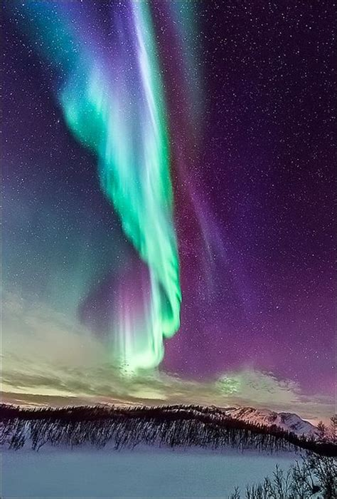 when can i see the northern lights in iceland 99 best northen lights images on pinterest northen