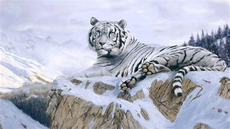 imagenes en 3d de tigres la belleza de los tigres blancos youtube