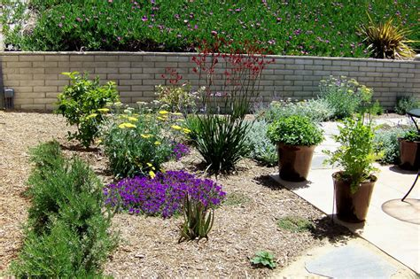 Backyard Ideas San Diego Backyard Landscaping San Diego Pdf