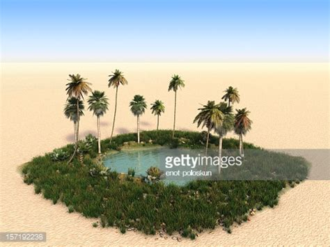 desert oasis stock photos and pictures | getty images