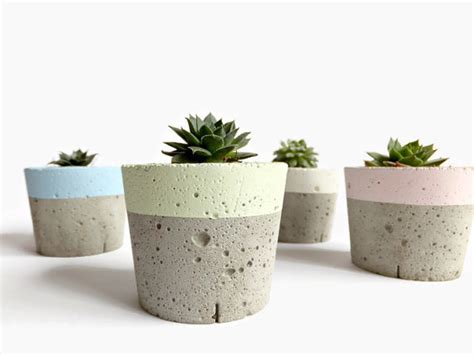 home decor pots pastel concrete mini planter for succulent home decor modern