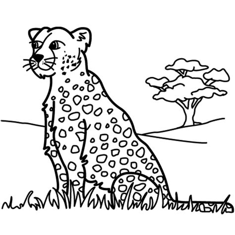 leopard coloring pages pdf leopard pictures to print coloring home