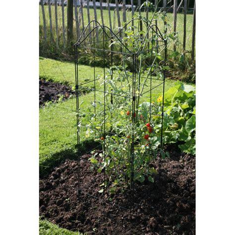 Support Plante Grimpante Bambou by Treillis Bois Pour Plantes Grimpantes Ymedia Info