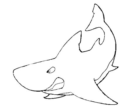 imagenes para colorear tiburon dibujo de tibur 243 n enfadado para colorear dibujos net