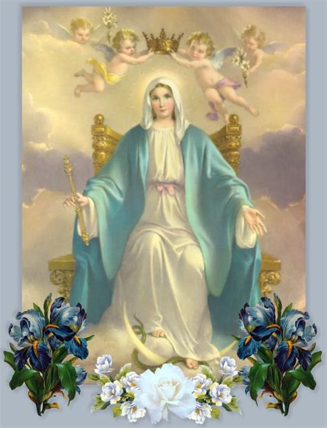 forgiving a marian novena of healing and peace books novena s and prayers to the blessed