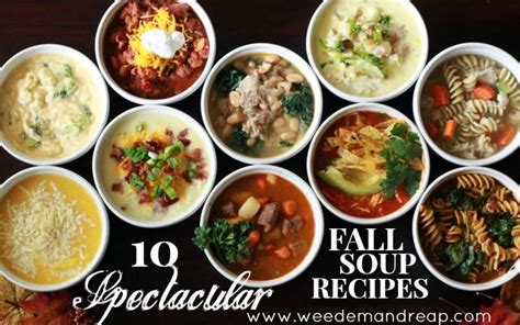 45 amazing soup recipes pure traditions