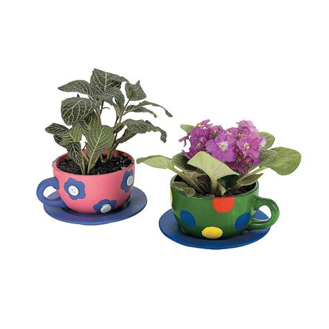 Tea Cup Planter Diy Ceramic Tea Cup Planters Oriental Trading