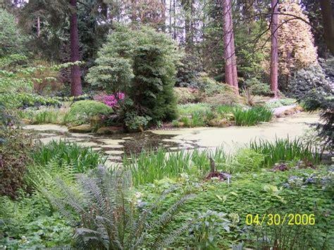 Rhododendron Species Botanical Garden by Rhododendron Species Botanical Garden Federal Way Wa