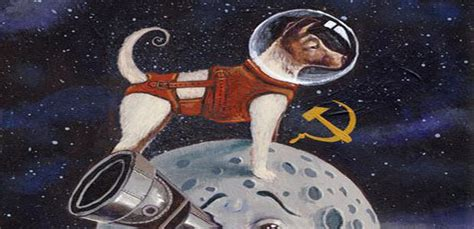 laika the space remembering laika the traveller into cosmos search of