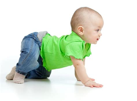primal origins what babies can teach us about movement