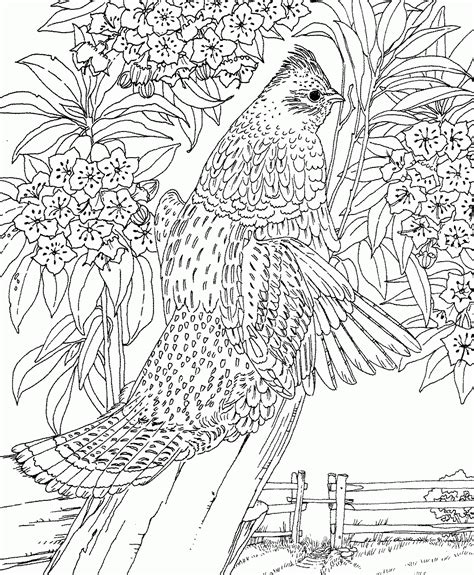 complex coloring pages of animals complicated animal coloring pages coloring home