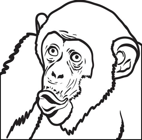 free coloring pages of chimp