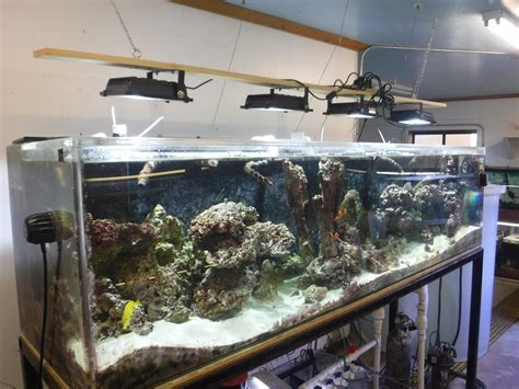 aquascape reddit aquascape ohio u aquascape ohio reddit
