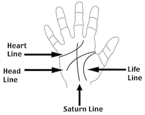 lines in palmistry reading major sanvers shipping thread