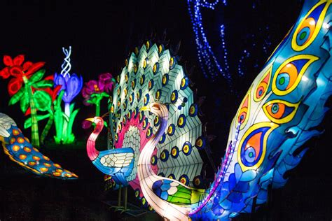 new year lantern festival chiswick house magical lantern festival at chiswick house stunning