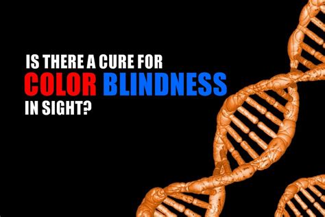 color blindness cure color blindness contact lens king