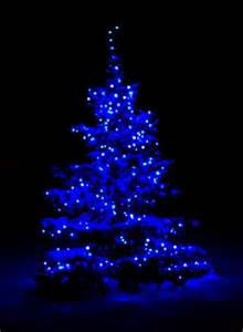 25 best ideas about blue christmas lights on pinterest
