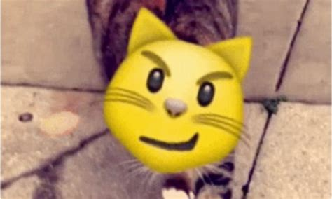 Animated Stickers Snapchat