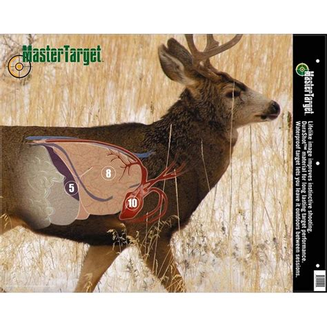 360 best target images on pinterest deer hunting gun 287 best images about women and children hunting on