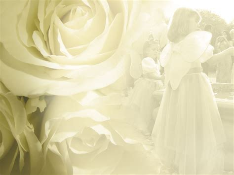 Wedding Wallpapers by Free Wedding Flower Backgrounds And Wallpapers