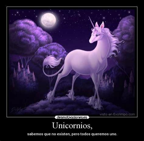 frases con imagenes de unicornios im 225 genes y carteles de unicornios pag 43 desmotivaciones