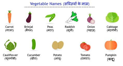 vegetables names vegetable names in pictures to pin on