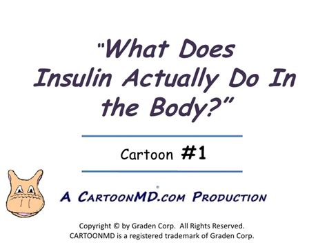 what does a resistor actually do what is insulin resistance