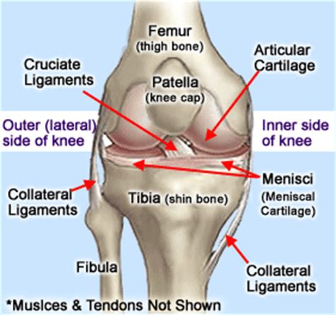 Knee Injuries Therapy Works Ltd