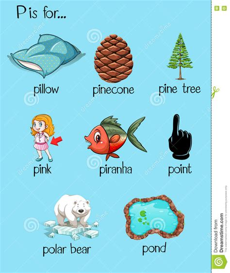 4 Letter Words Beginning With P many words begin with letter p stock vector illustration
