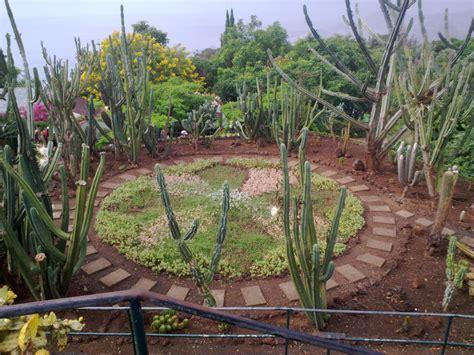 giardino zen piante giardino zen quali piante acquario zen acquari