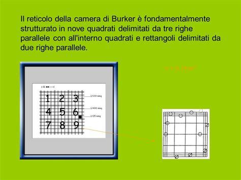 di burker attivit 192 intracellulare ppt scaricare
