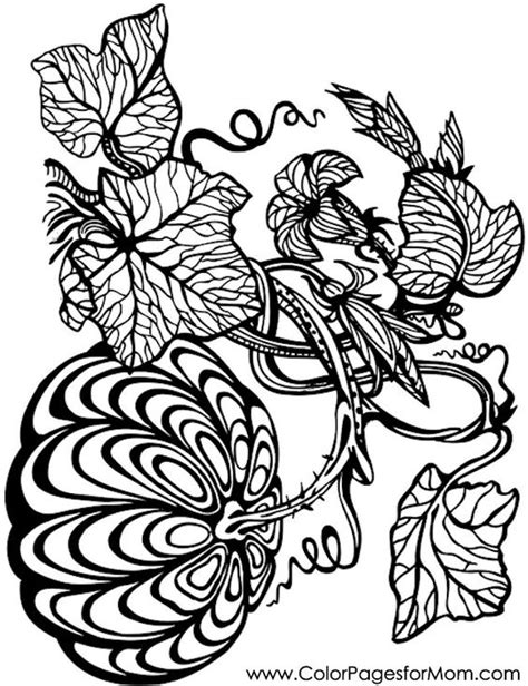 pumpkin coloring page for adults pumpkin vine free printable adult coloring page via