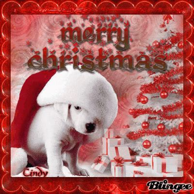 merry puppy merry puppy picture 127224885 blingee